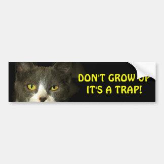 De Kat van de bumper zegt groeit geen Meme Bumpersticker