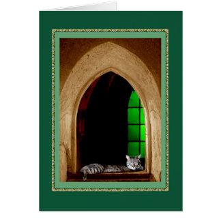 De Kat van de kathedraal Briefkaarten 0