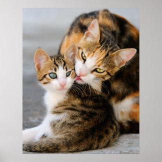 De kat van de moeder houdt van leuk katje poster