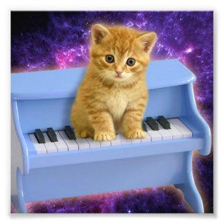 De kat van de piano foto afdruk