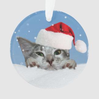 De Kat van de vakantie in het Pet van de Kerstman Ornament