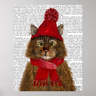 De Kat van de Wasbeer van Maine Poster