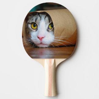 De kat van het document - grappige katten - kat tafeltennis bat
