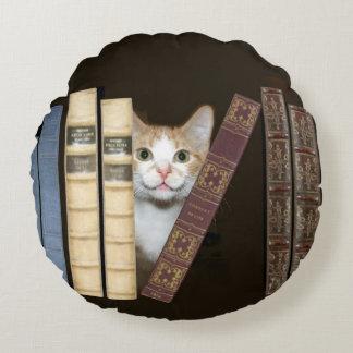 De kat van het kat met boeken rond kussen