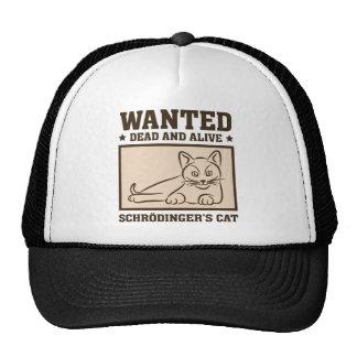 De Kat van Schrodinger Mesh Pet