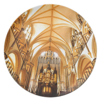 De kathedraal van Lincoln Melamine+bord