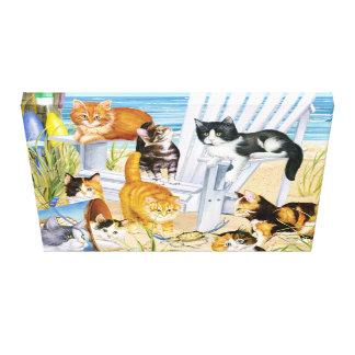 De Katjes van de Bedelaar van het strand Canvas Afdrukken
