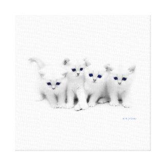 De Katjes van het baby Canvas Afdruk