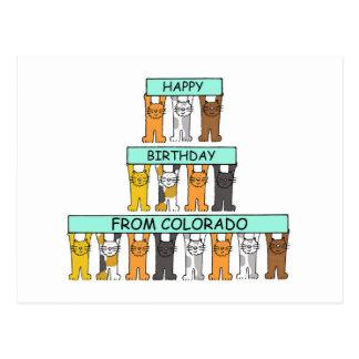 De Katten van de Verjaardag van Colorado Briefkaart