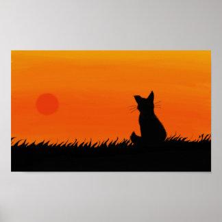 De kattenposter van de zonsondergang poster