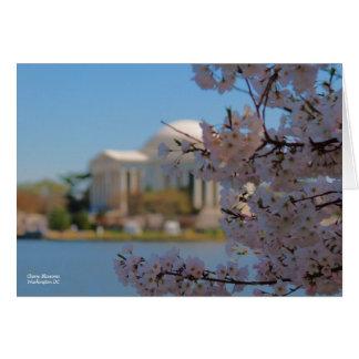 De kers komt Washington DC tot bloei Briefkaarten 0