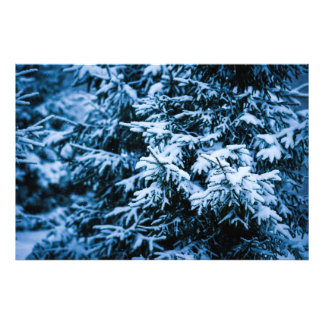 De Kerstboom van de Winter van de sneeuwval Foto Afdrukken