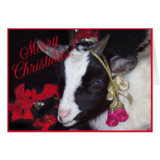 De Kerstkaart Rufus van de geit Kaart