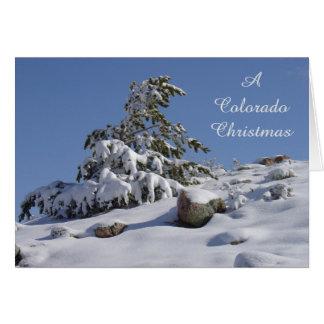De Kerstkaart van Colorado van de Pijnboom van de Kaart