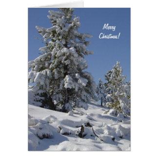 De Kerstkaart van de Sneeuw van Colorado Wenskaart