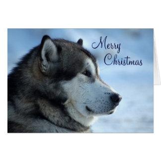 De Kerstkaart van de wolf - Vrolijke Kerstmis Kaart