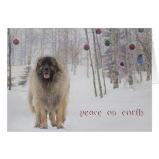 De Kerstkaart van Leonberger van de vrede Briefkaarten 0