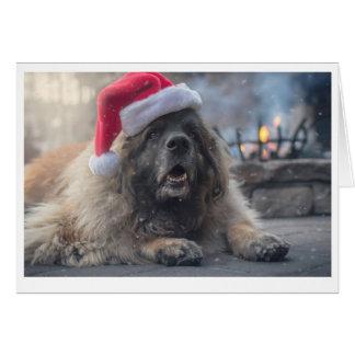 De Kerstman van Leonberger Briefkaarten 0