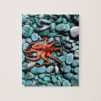 De Kiezelstenen van de octopus Foto Puzzels