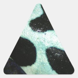De Kikker van de Pijl van het vergift Sticker