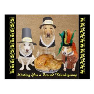 De klantgerichte Grappige Gelukkige Thanksgiving Briefkaart