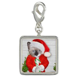 De kleine Charme van het Katje van de Kerstman Charms