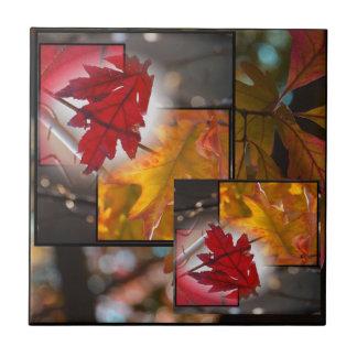 De Kleine Tegel van de Collage van het Blad van de Tegeltje