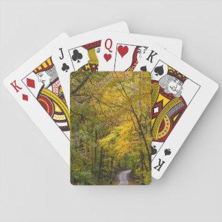 De kleine Weg van het Grint die met de Kleur van Speelkaarten