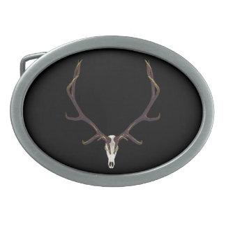 De kleur van de de elandenschedel van de stier gespen