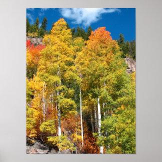 De Kleuren van de herfst Poster