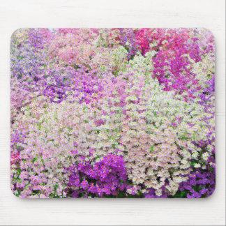 De kleurrijke Armen bemannen Orchidee Mousemat Muismat