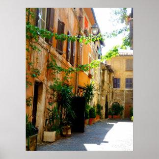 De kleurrijke Gebouwen van Rome Poster