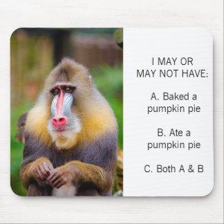 De kleurrijke Pastei Meme van de Pompoen van de Muismat
