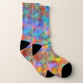 De kleurrijke sokken van de mooie
