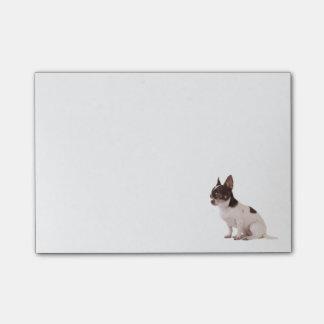 De Kleverige Nota's van de Post-it van de Hond van Post-it® Notes