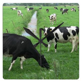 De Klok van de koe