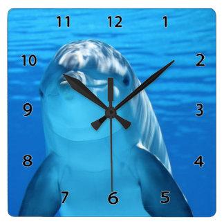 De Klok van de Muur van de dolfijn