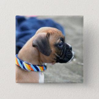 De knoop van het Puppy van de bokser Vierkante Button 5,1 Cm