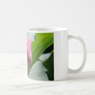 De Knop van Lotus Koffiemok