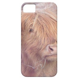 De Koe van het hoogland, het Vee van het Hoogland Barely There iPhone 5 Hoesje
