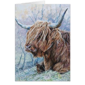 De koe van het hoogland, ijzige ochtend briefkaarten 0