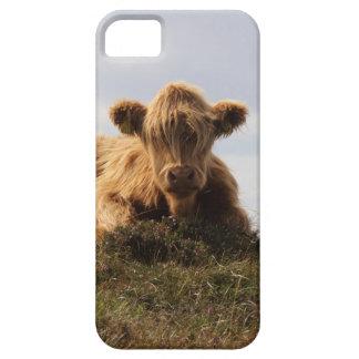 De koe van Luing op het Eiland van Islay, Barely There iPhone 5 Hoesje