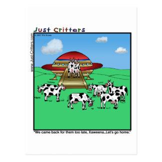De Koeien van vreemdelingen Briefkaart