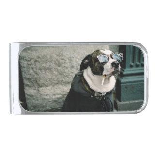 De koele Klem van het Geld van de Hond Rokende Verzilverde Geldclip