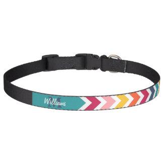 De koele trendy kleurrijke chevron van het hondenhalsbanden