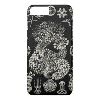 De Komkommers van het Zee van Ernst Haeckel iPhone 7 Plus Hoesje