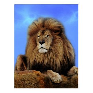 De Koning van de leeuw in Afrika Briefkaart