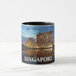 De Kop van Panorma van de Douane van Singaopre