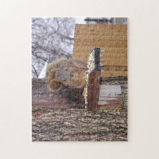 De koude Eekhoorn die van Oklahoma het Raadsel van Legpuzzel