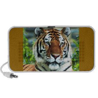 De Krabbel van de tijger Reis Speaker